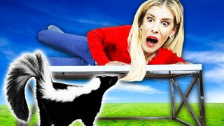 Worst Skunk Prank on Rebecca Zamolo in her House! Pranking wife for 24 HOURS in Real Life